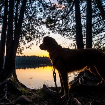 Merrick Backcountry Adventure