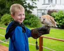 Dingle, Ireland with Kids